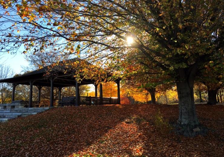cherokee park - fall